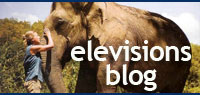 elevisions blog